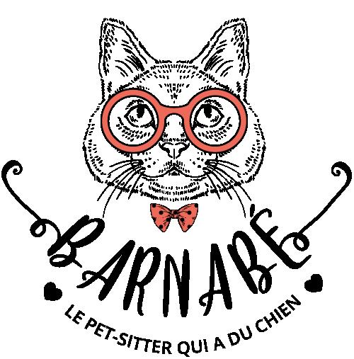 logo barnabe petsitter savoie chambery retina